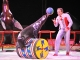 20110513_circus_krone_12