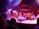 Zirkus Knie Show